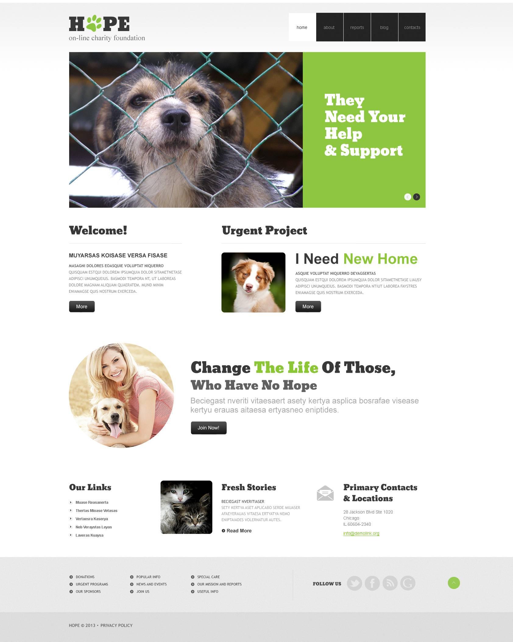 Reszponzív Clear Animal Shelter WordPress sablon 45086 - képernyőkép