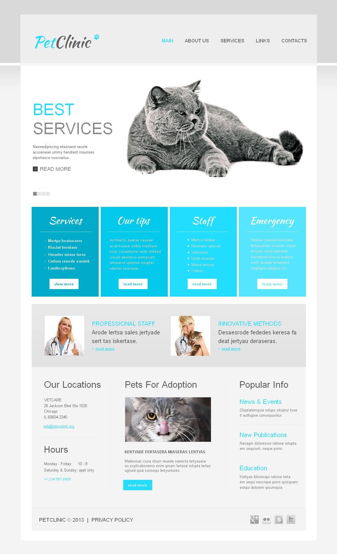 Template Moto CMS HTML para Sites de Veterinária №45099 - captura de tela