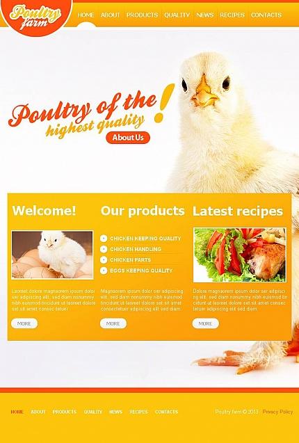 ADOBE Photoshop Template 45130 Home Page Screenshot