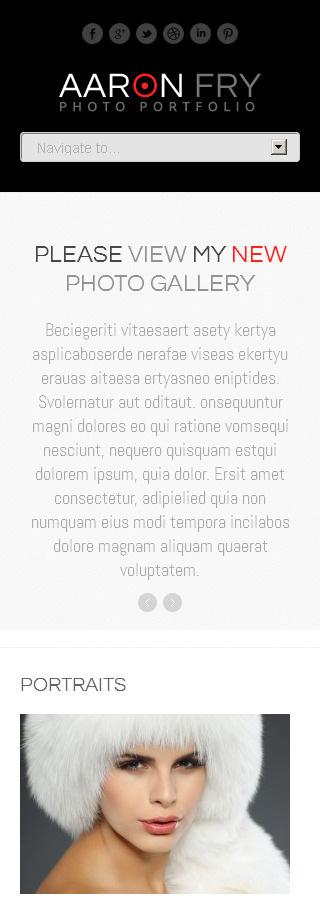 WordPress Theme/Template 45176 Main Page Screenshot