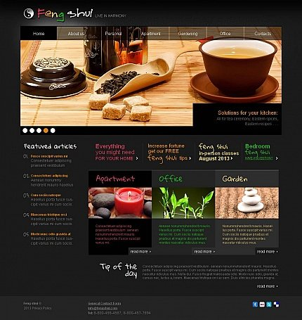 ADOBE Photoshop Template 45186 Home Page Screenshot