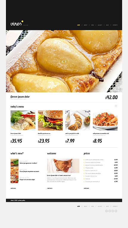WordPress Theme/Template 45241 Main Page Screenshot