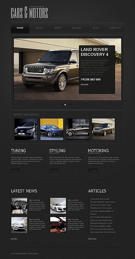 ADOBE Photoshop Template 45362 Home Page Screenshot