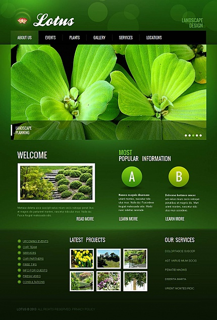 ADOBE Photoshop Template 45364 Home Page Screenshot