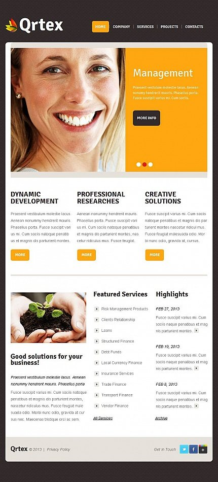 ADOBE Photoshop Template 45383 Home Page Screenshot
