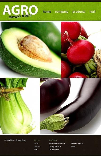 Vegetable Facebook HTML CMS Template Facebook Screenshot