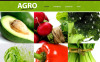 Vegetable Moto CMS HTML Template New Screenshots BIG