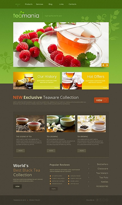 ADOBE Photoshop Template 45447 Home Page Screenshot