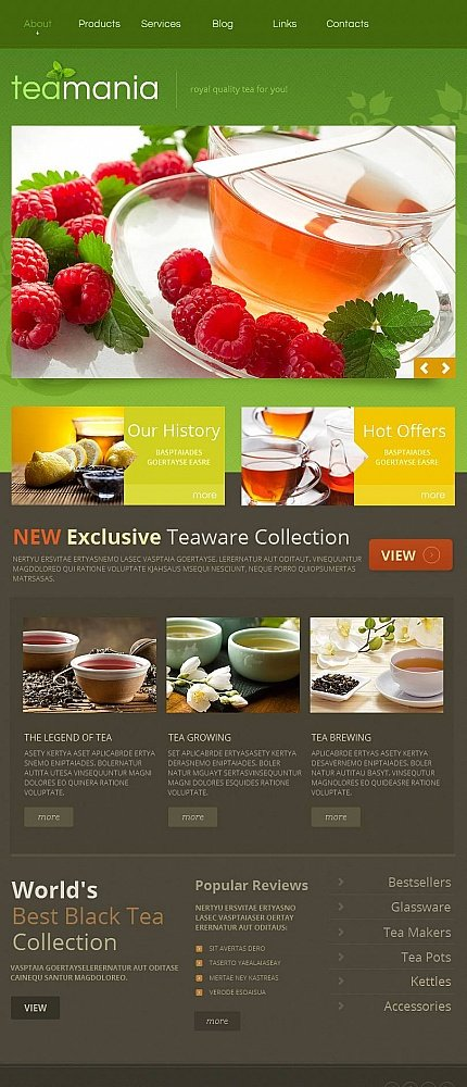 ADOBE Photoshop Template 45467 Home Page Screenshot