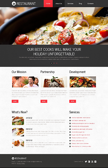 Drupal Template 45519 Main Page Screenshot