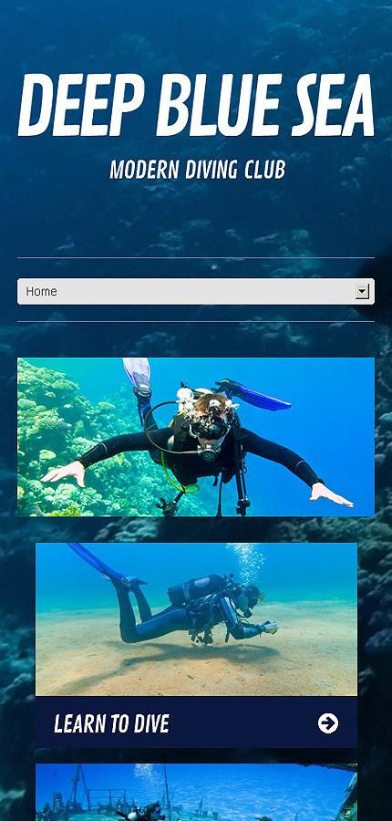 WordPress Theme/Template 45576 Main Page Screenshot