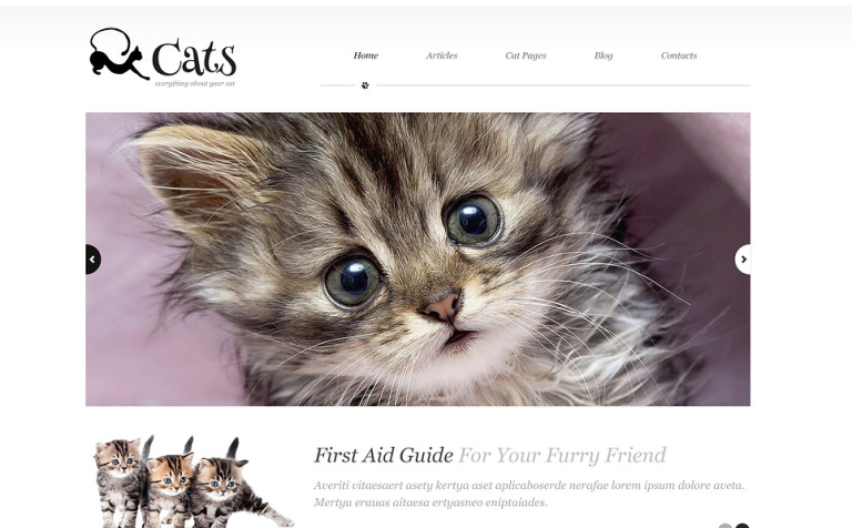 About Cats WordPress Theme