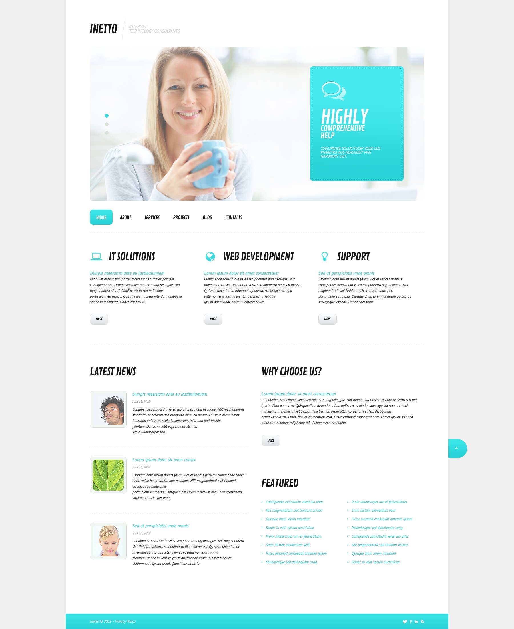 Internet Responsive WordPress Theme - screenshot