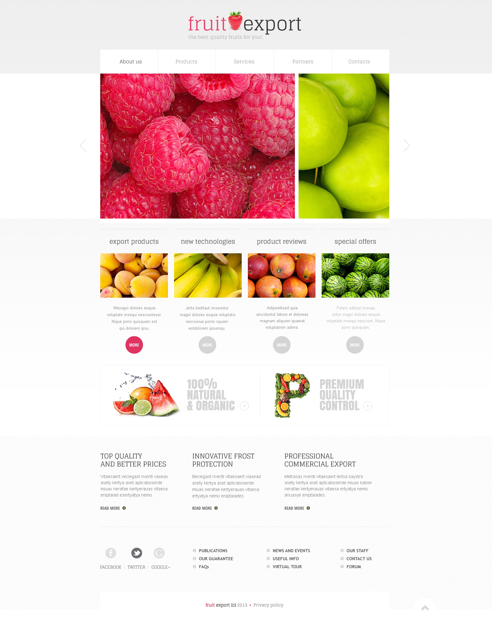 Responsive Website Vorlage für Fruit #45529