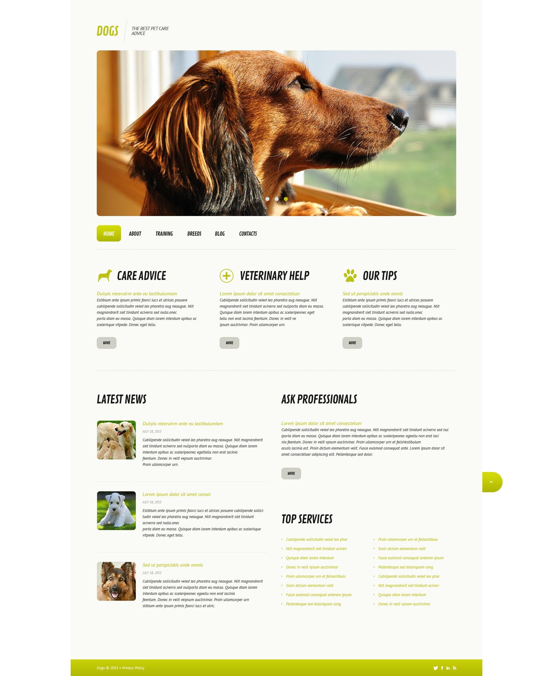 Tema WordPress Responsive #45579 per Un Sito di Cani
