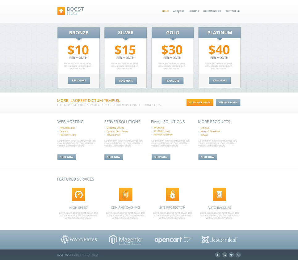 Clean Style Hosting Website Template - image