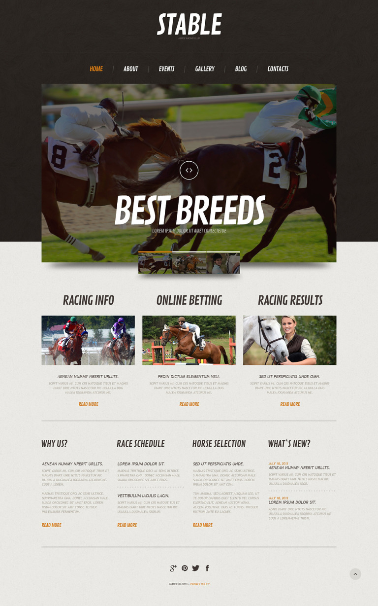 Horse Responsive WordPress Theme New Screenshots BIG