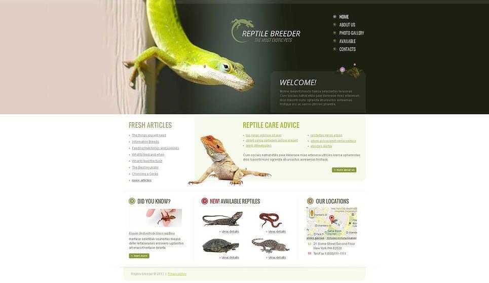 Template Moto CMS HTML para Sites de Templates de Répteis №45777 New Screenshots BIG