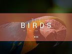 Animals & Pets Website  Template 45864
