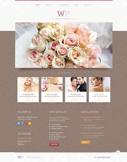 WordPress Theme/Template 45883 Main Page Screenshot