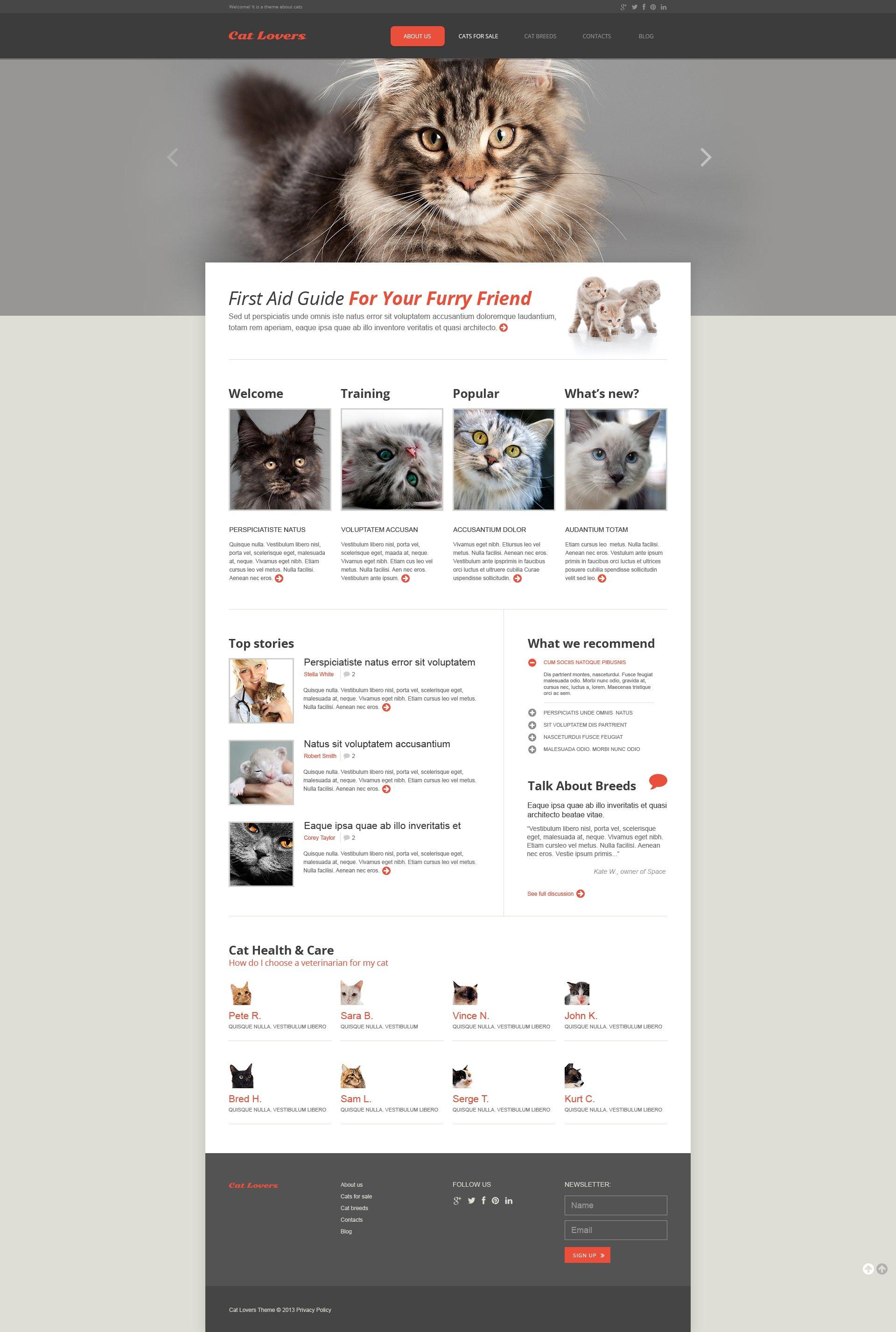 Reszponzív Macskák témakörű Weboldal sablon 45894
