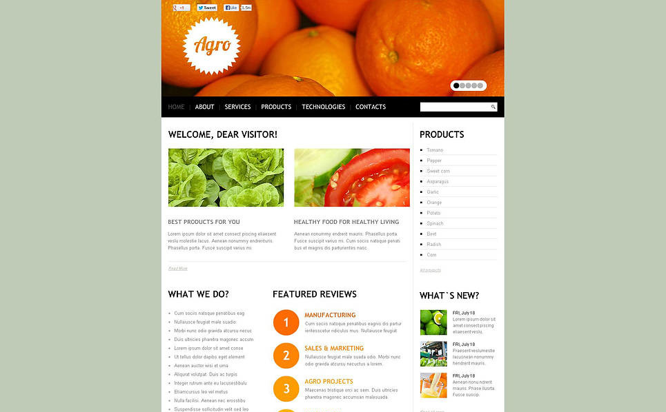Flash CMS Vorlage für Fruit  New Screenshots BIG