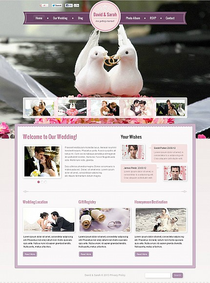 ADOBE Photoshop Template 45982 Home Page Screenshot