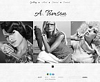 Art & Photography Flash CMS  Template 45985