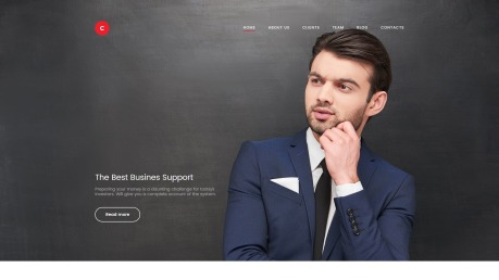 Business Website Design - Consulter - image