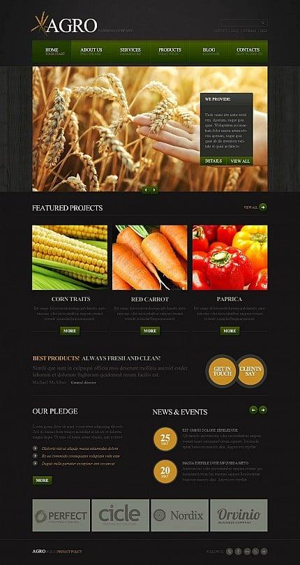 ADOBE Photoshop Template 46061 Home Page Screenshot