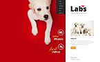 Animals & Pets Website  Template 46077