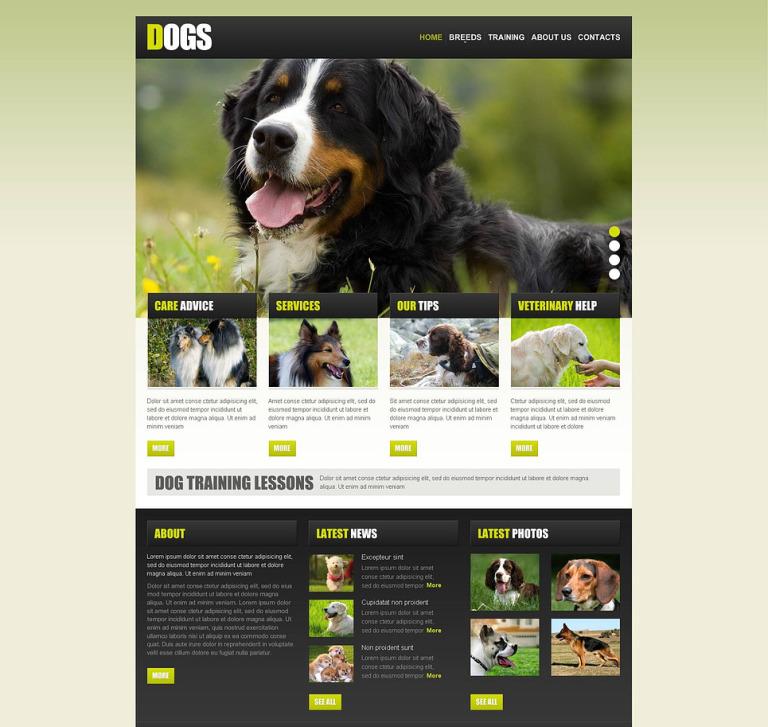 Dog Flash CMS Template New Screenshots BIG