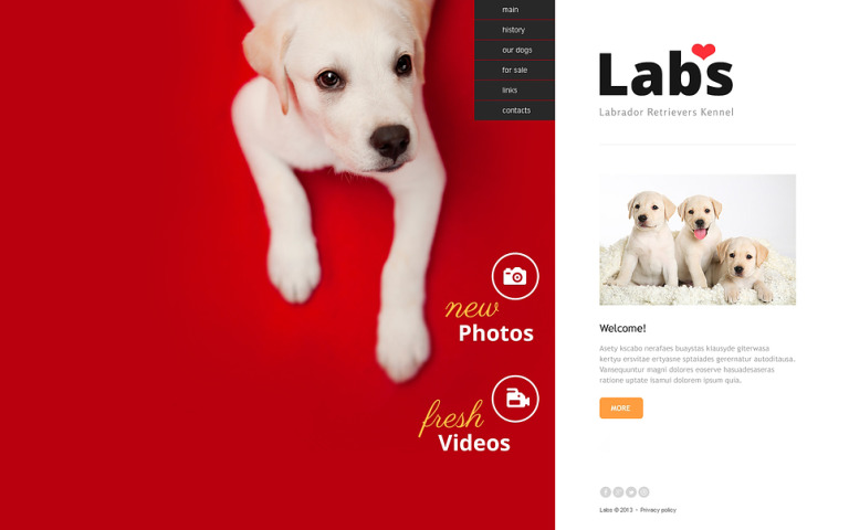 Dog Website Template New Screenshots BIG