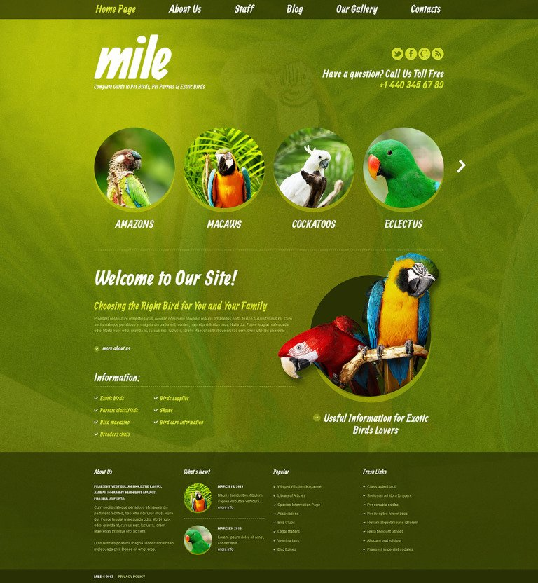 Exotic Birds Blog WordPress Theme New Screenshots BIG
