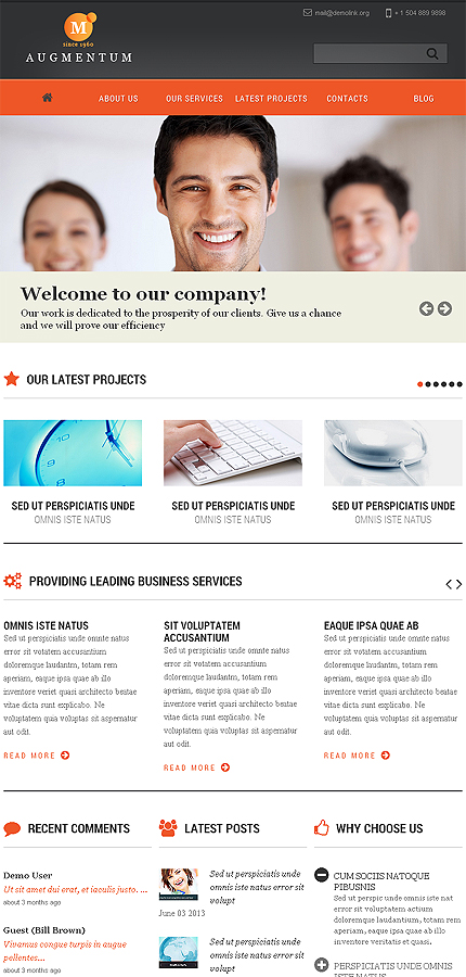 Joomla Theme/Template 46100 Main Page Screenshot