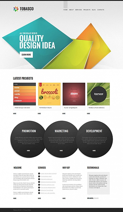 ADOBE Photoshop Template 46105 Home Page Screenshot
