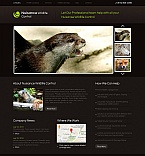 Animals & Pets Moto CMS HTML  Template 46113