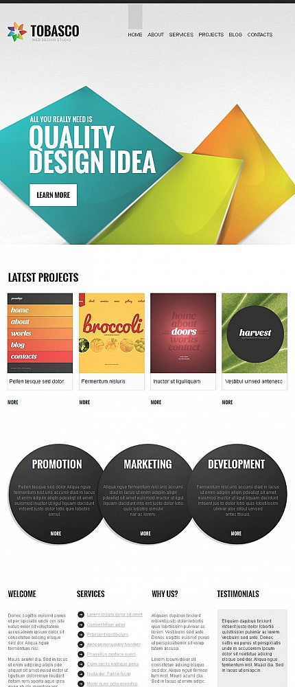 ADOBE Photoshop Template 46126 Home Page Screenshot