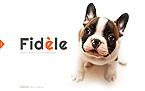 Animals & Pets Website  Template 46142