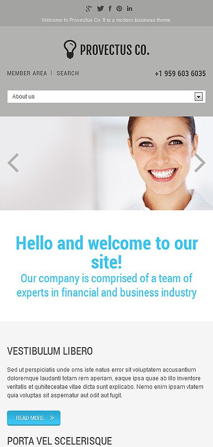 Joomla Theme/Template 46171 Main Page Screenshot