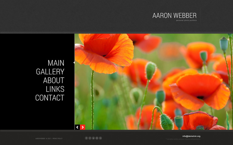 Photographer Portfolio Responsive Joomla Template New Screenshots BIG