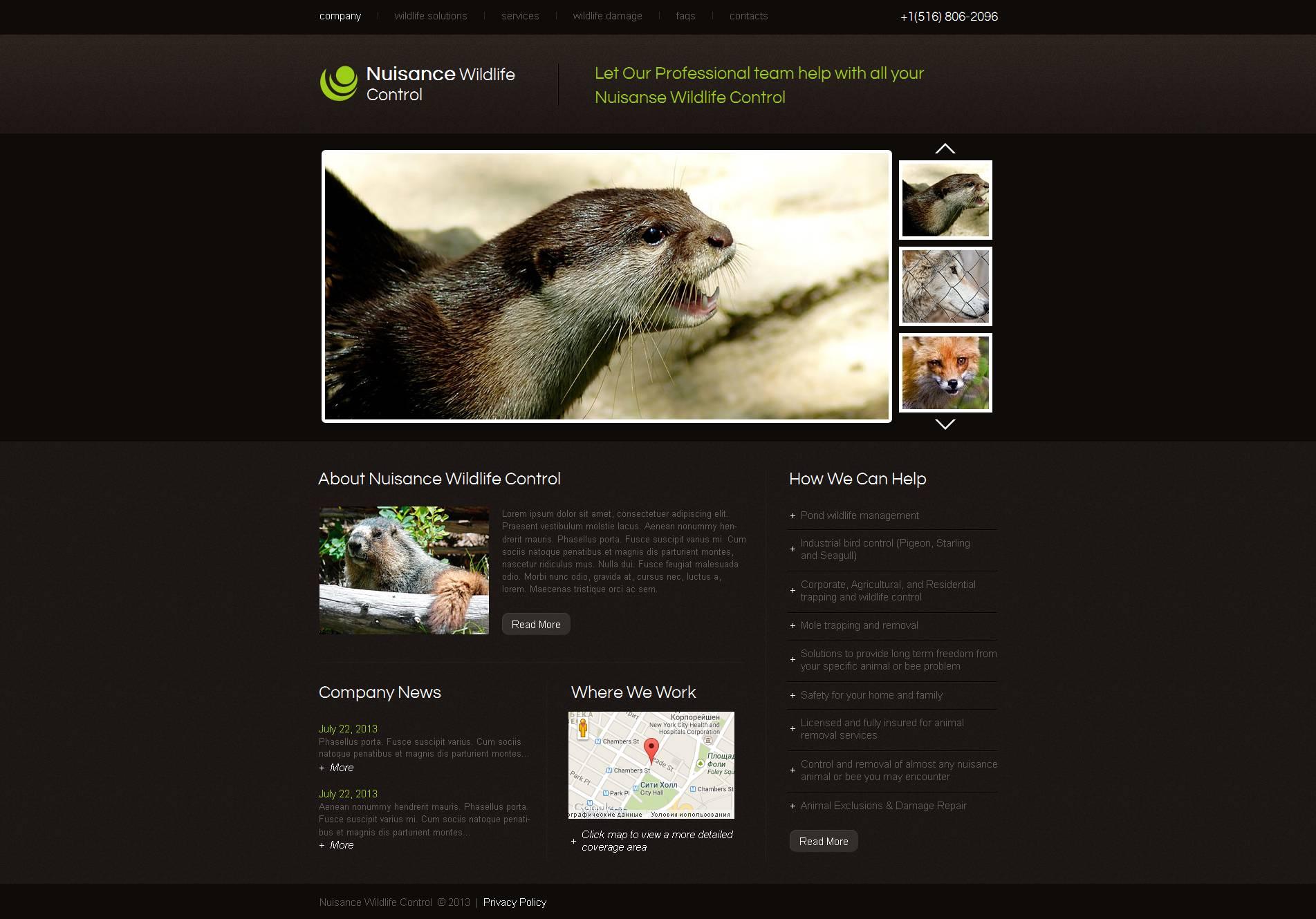 Wild Life Moto CMS HTML Template