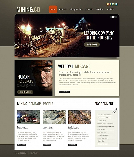 ADOBE Photoshop Template 46298 Home Page Screenshot