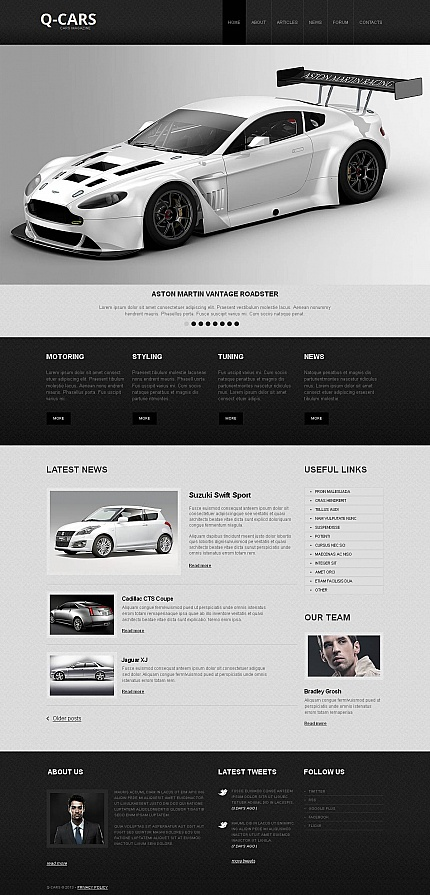 ADOBE Photoshop Template 46302 Home Page Screenshot