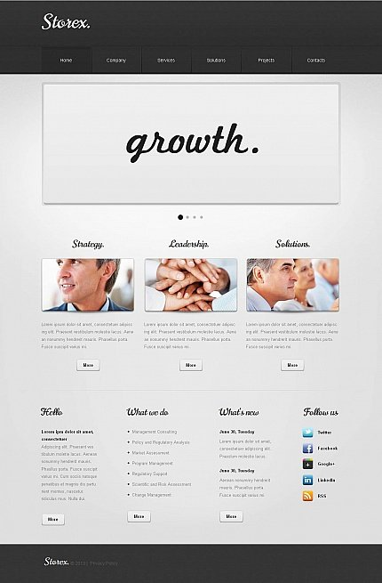 ADOBE Photoshop Template 46309 Home Page Screenshot