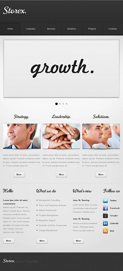 ADOBE Photoshop Template 46328 Home Page Screenshot