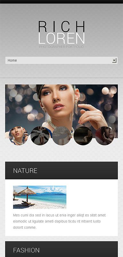 WordPress Theme/Template 46385 Main Page Screenshot