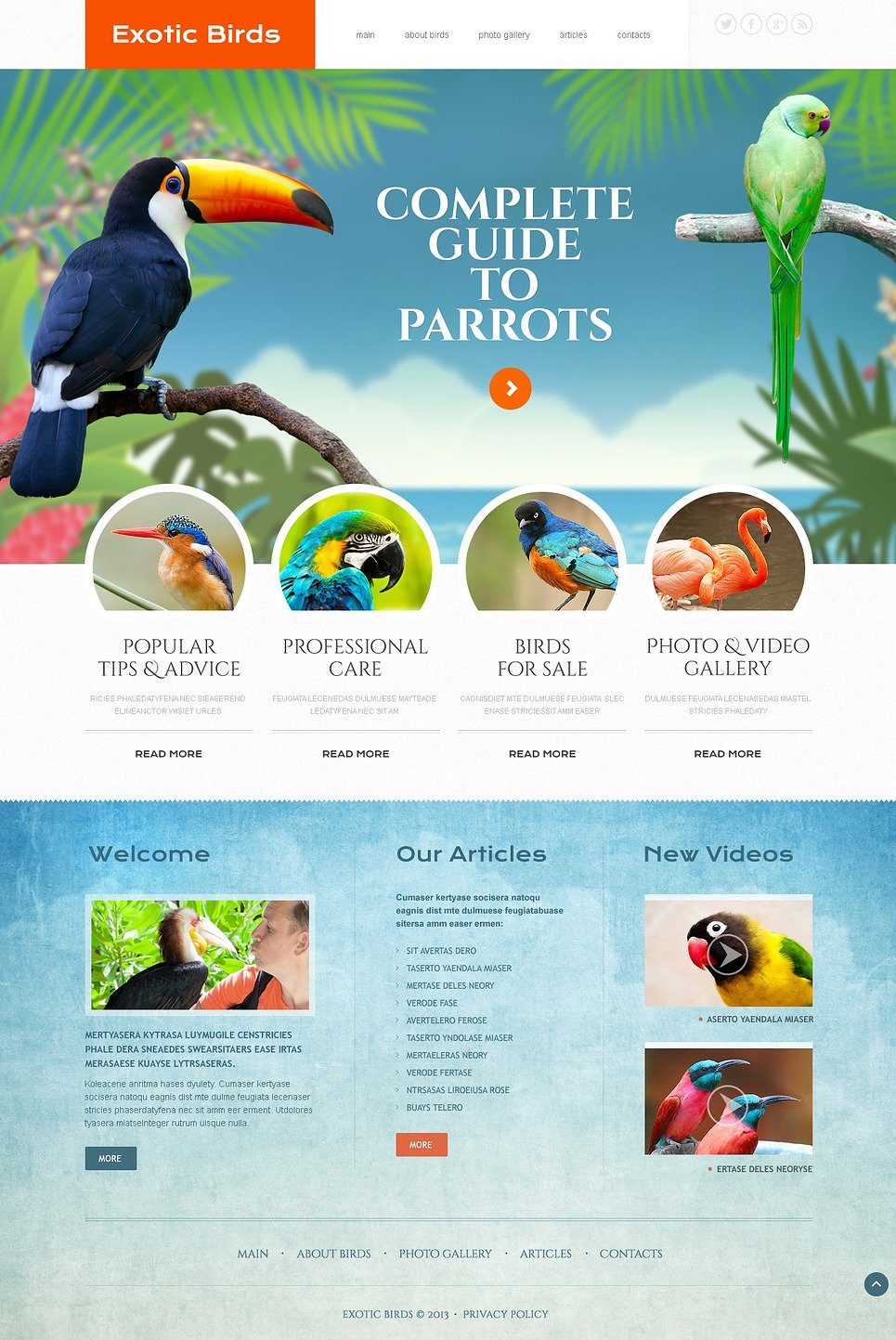Birds Responsive Website Template New Screenshots BIG