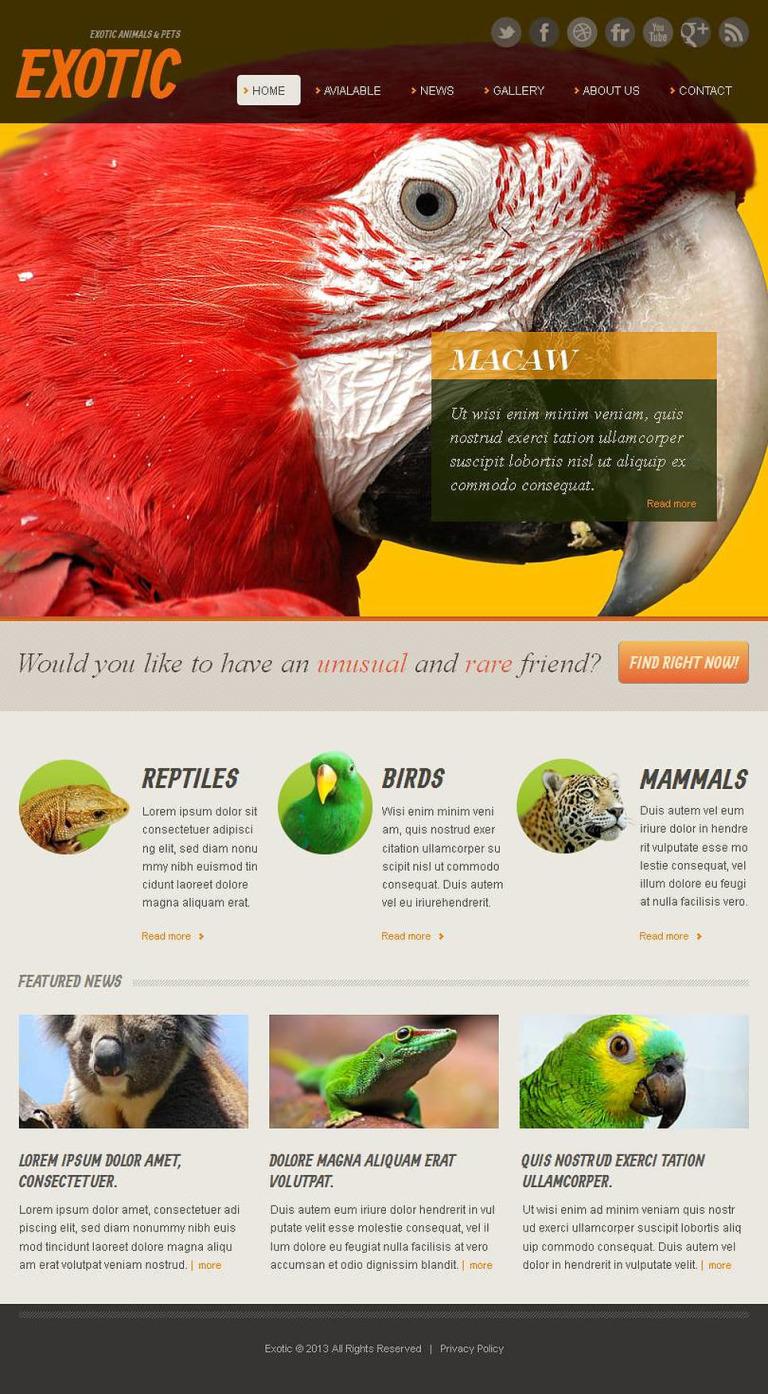Exotic Pets Facebook HTML CMS Template New Screenshots BIG
