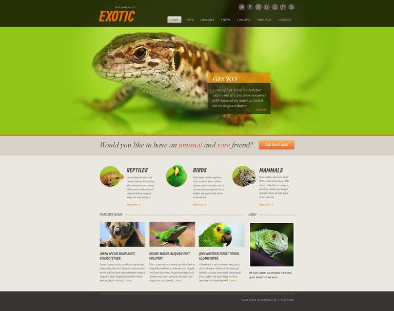 Exotic Pets Moto CMS HTML Template New Screenshots BIG
